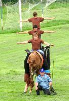 Bővebben: Szereted a lovakat??