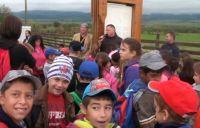 Bővebben: Meghívó Jubileumi Zarándoklatra a Szent Ferenc Alapítvány Otthonaihoz